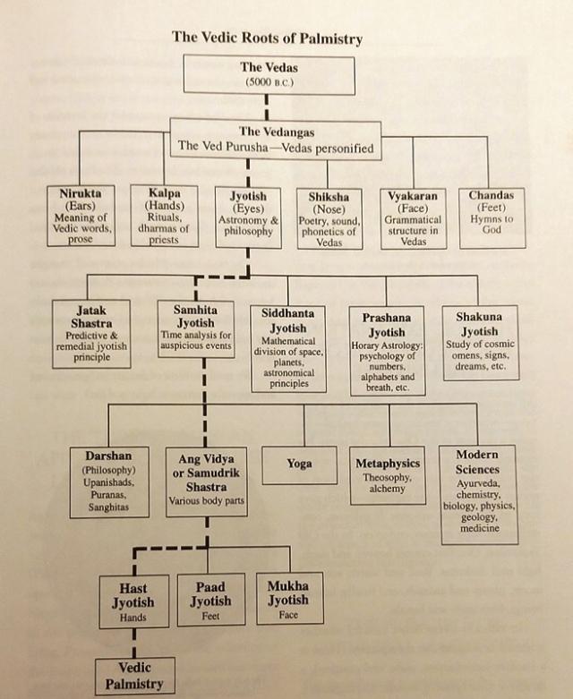 harta radacinilor chiromantiei